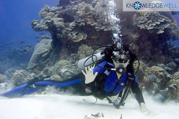 Brazilian Volunteer Claygee Lund learns to dive after teaching class each day Federated States of Micronesia